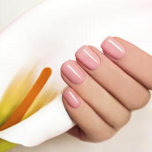 Manicure or Gel Polish